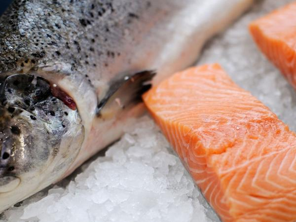 Salmon Masterclass – June 2019