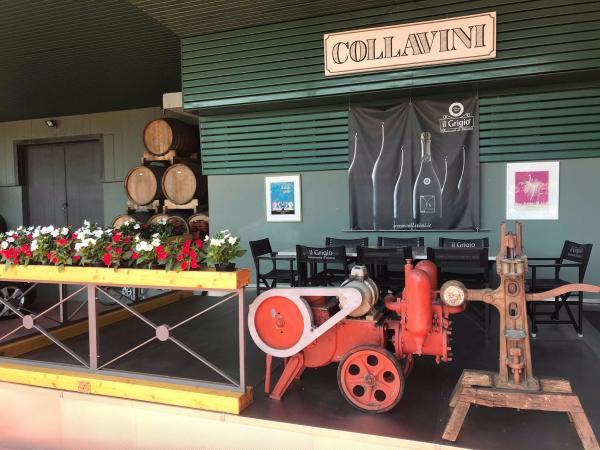 Collavini Winery